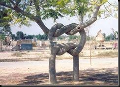 tree5rt8